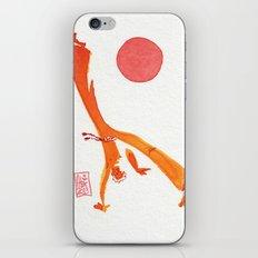 Capoeira 303 iPhone & iPod Skin