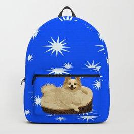 Lexington Bromwell Barker III Backpack