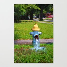 Fire Hydrant Gushing Water Canvas Print