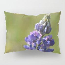 Nootka Lupine Pillow Sham