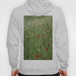 Seed Head With A Beautiful Blur of Poppies Background Hoody