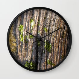 Macro photo of rotted wood Wall Clock