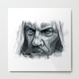 Eye of the North Metal Print