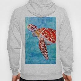 Sea turtle and friend Hoody