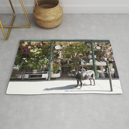 Dog in the Flower District, Paris - travel photography Rug