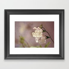 White flower and texture Framed Art Print