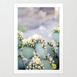 Dreamy Cactus Art Print
