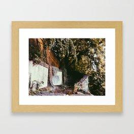 Forgotten Stairs Framed Art Print