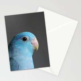 jellybean Stationery Cards