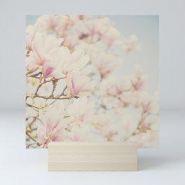 pink magnolia blossoms ... Mini Art Print