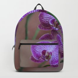Pink Orchids Backpack