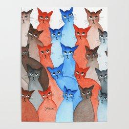 Arizona Many Whimsical Cats Poster