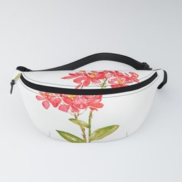 Epidendrum radicans orange ground orchid watercolor  Fanny Pack