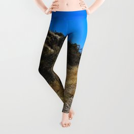 Dust and Dirt Leggings