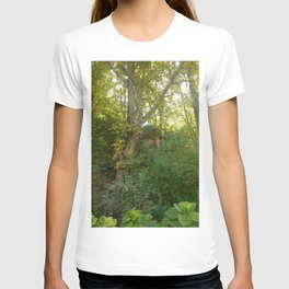 Secret Garden in Ravenna T-shirt