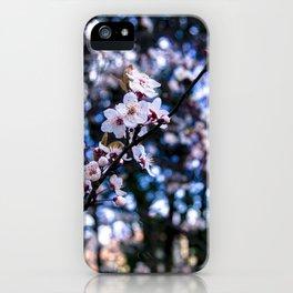Sakura blossom iPhone Case