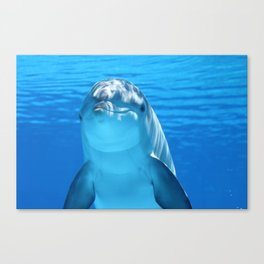 Dolphin's Smile Canvas Print