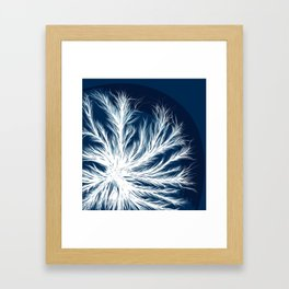 Mycelium in a petri dish Framed Art Print
