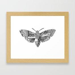 Death Head Moth Framed Art Print
