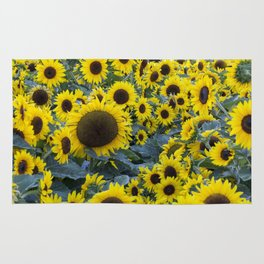 Fields of Sunflowers Rug