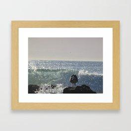 Seagull Ducking Framed Art Print