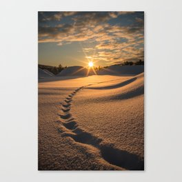 Chase the light. Canvas Print