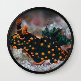 Orange-spotted Nembrotha Monster Nudibranch Wall Clock