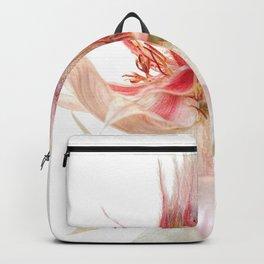 Vintage Blushing Bride Protea Backpack