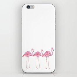 Flamingo - Pink Bird - Animal On White Background iPhone Skin