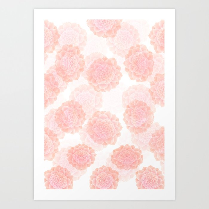 pink succulents Art Print