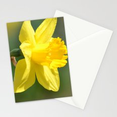 Yellow Daffodil Stationery Cards