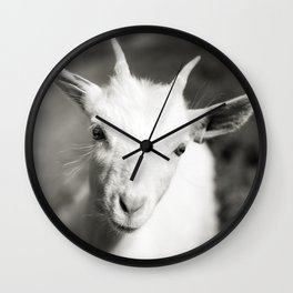 Goat kid Wall Clock
