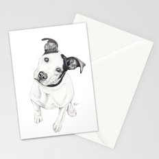 Rosco (Pit Mix) Stationery Cards