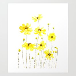 yellow cosmos flowers watercolor Art Print