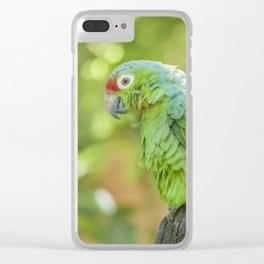 Tropical Parrot at Zoo, Guayaquil Clear iPhone Case