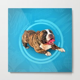 American Bully Puppy Metal Print