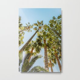 Palm Trees, Summer Beach Vibes, Travel Print, Palm Tree Coconut Leaves, Green Leaf, Blue Teal Sky, Hot Season Vibe Metal Print