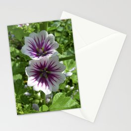mallow bloom VII Stationery Cards