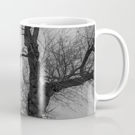 Nature Photography Weeping Willow | Lungs of the Earth | Black and White Coffee Mug