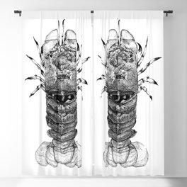 Shovel-nosed lobster Blackout Curtain