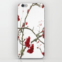Wintry Day  iPhone Skin