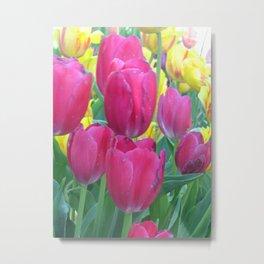 Sweet Spring Tulips Metal Print