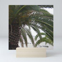 California Dream - Fronded view 1 Mini Art Print