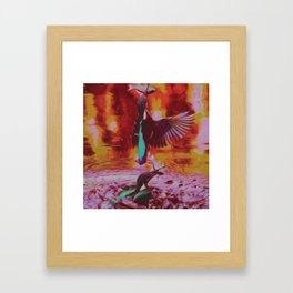 Kingfishin' (pt.1) III Framed Art Print