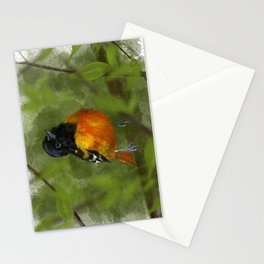 Oriole Stationery Cards