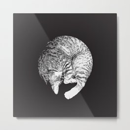 PURRFECT MOON Metal Print
