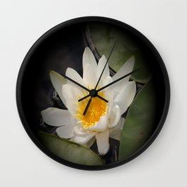 White Waterlily On A Dark Background #decor #society6 Wall Clock