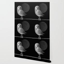 Barn Owl Full Moon Wallpaper