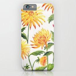 Dahlia Flowers 1 iPhone Case