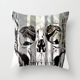 The In Between Throw Pillow
